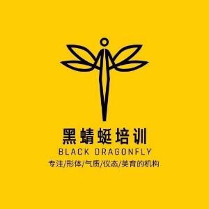 濟南黑蜻蜓模特公司logo