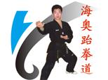 青岛海奥跆拳道俱乐部
