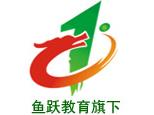 鱼跃(青岛)拓展训练机构