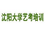 沈阳大学艺考培训