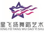 武汉星飞扬舞蹈培训中心