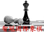 临沂智冠国际象棋logo