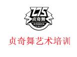 湖南省贞奇舞艺术培训中心