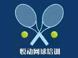 天津人人悦动网球