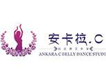烟台安卡拉舞蹈瑜伽培训