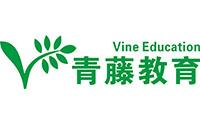 安徽青藤教育