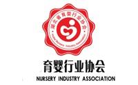 湖北省育婴行业协会