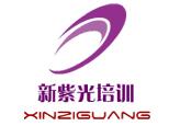北京新紫光培训学校