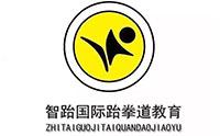 武汉智跆国际跆拳道教育