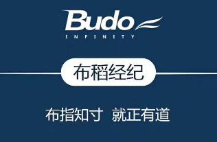 上海布稻商务咨询有限公司logo