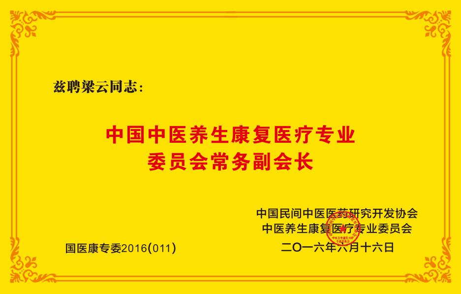 中国中医养生康复医疗专业委员会常务副会长
