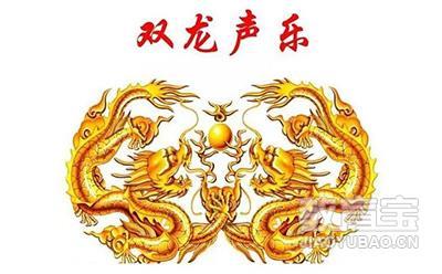 河南省双龙声乐艺术中心