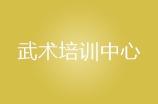 廣州武術培訓中心logo