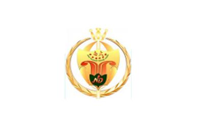 廣東南大培訓學院logo