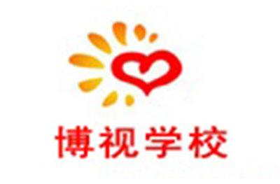 濟南博視教育logo