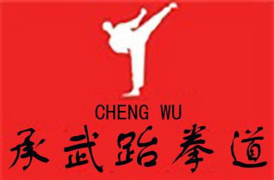 濟南市承武跆拳道俱樂部logo