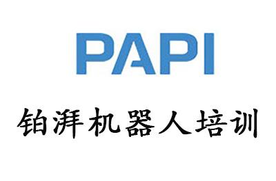 上海铂湃机器人培训logo