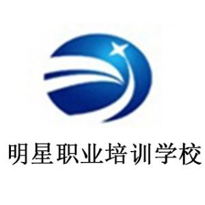 山東濟南明星職業培訓學校logo