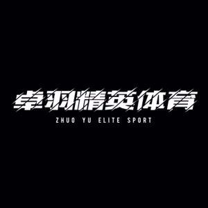 廣州卓羽精英體育logo