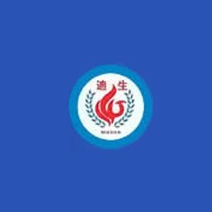 廣州迪生電力職業培訓學校logo