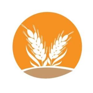 廣州麥朵美院在線少兒美術logo