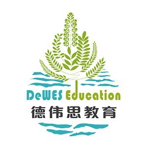 上海德偉思教育logo