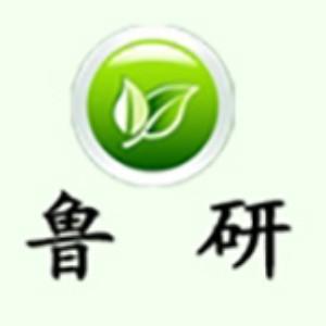 魯研管理咨詢公司logo