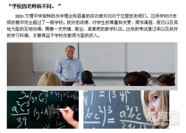 中学师资结构图