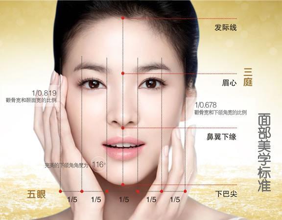 人体面部结构介绍及面部皮肤总类分析