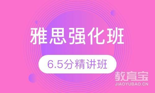 雅思6.5分强化班(15人)