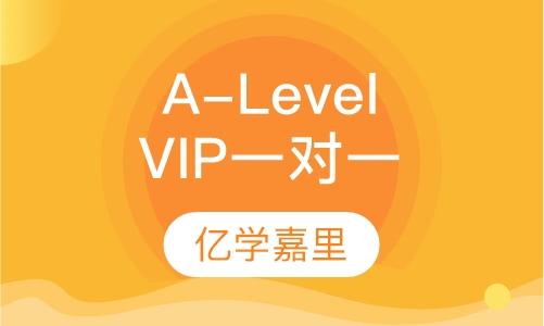 A-Level VIP一对一课程