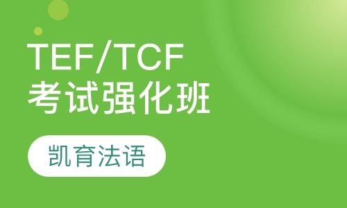 TEF/TCF考试强化班