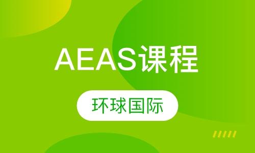 AEAS课程培训
