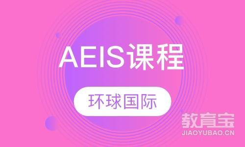 AEIS课程培训
