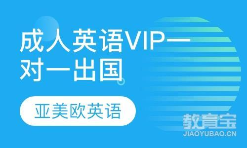 VIP一对一出国