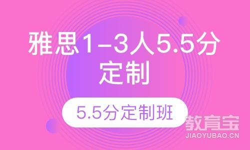 雅思vip1-3人5.5分定制班