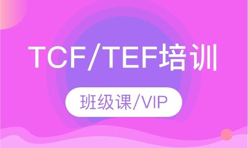 法语TCF/TEF保障班
