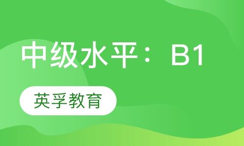 中级水平:B1