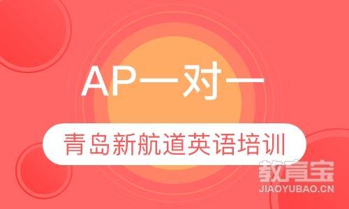 AP一对一