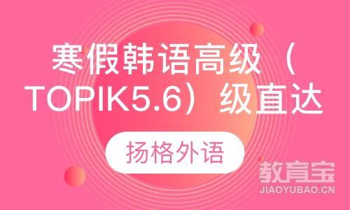 寒假韩语高级(topik5.6)级直达班