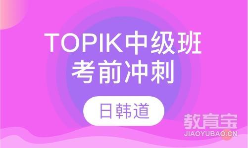 TOPIK考前冲刺中级班