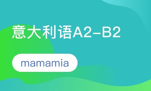 意大利语A2-B2班