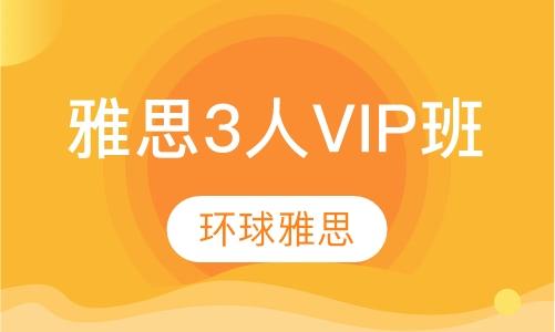 雅思3人VIP班