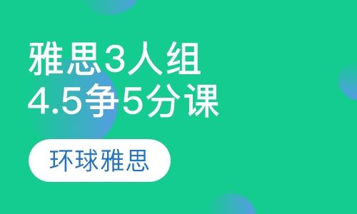 雅思4.5争5分3人小组课