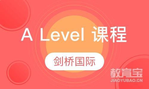 A Level 课程