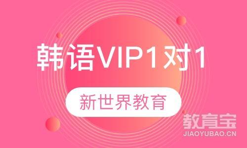 韩语VIP1对1课程