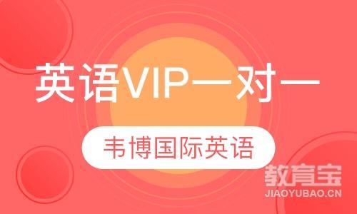 英语VIP一对一