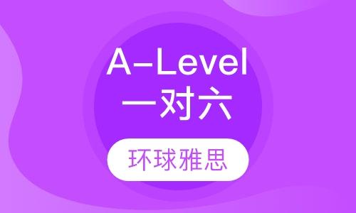 A-Level一对六