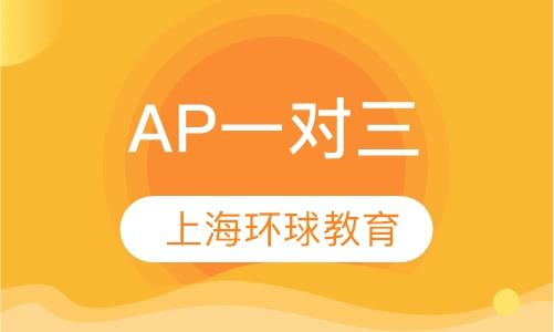 AP一对三