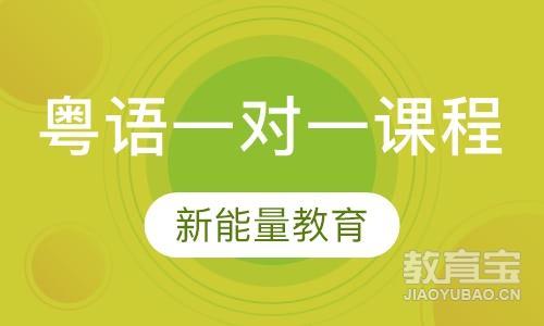 粤语VIP一对一尊享定制课程